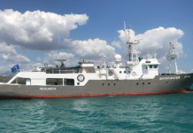 Marine Conservation Group Fins Attached To Name New Research Ship 'Sharkwater'