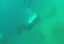 Divers Witness Underwater Earthquake (Photo credit: Newsflare)