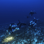 Underwater video transects completed by GUE technical divers allow scientists to study the health of deep sea ecosystems. (Photo credit: JP Bresser)