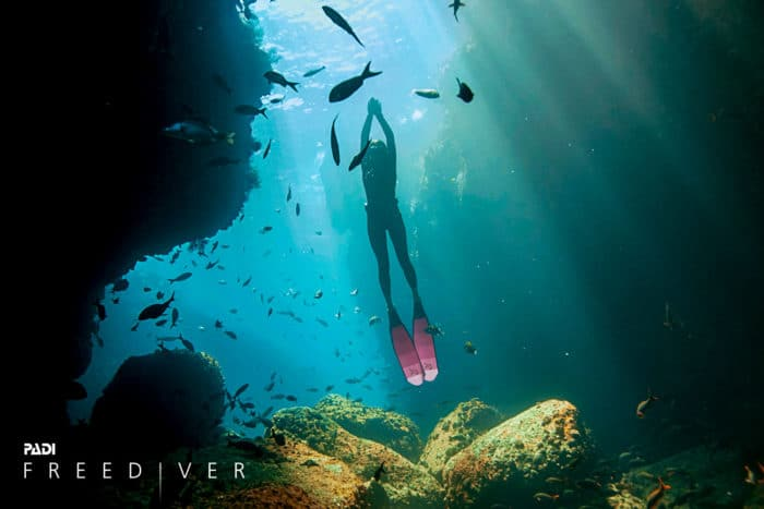 PADI Freediver - Explore a New World