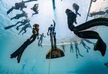 Best dive ever! (photo © Daan Verhoeven)