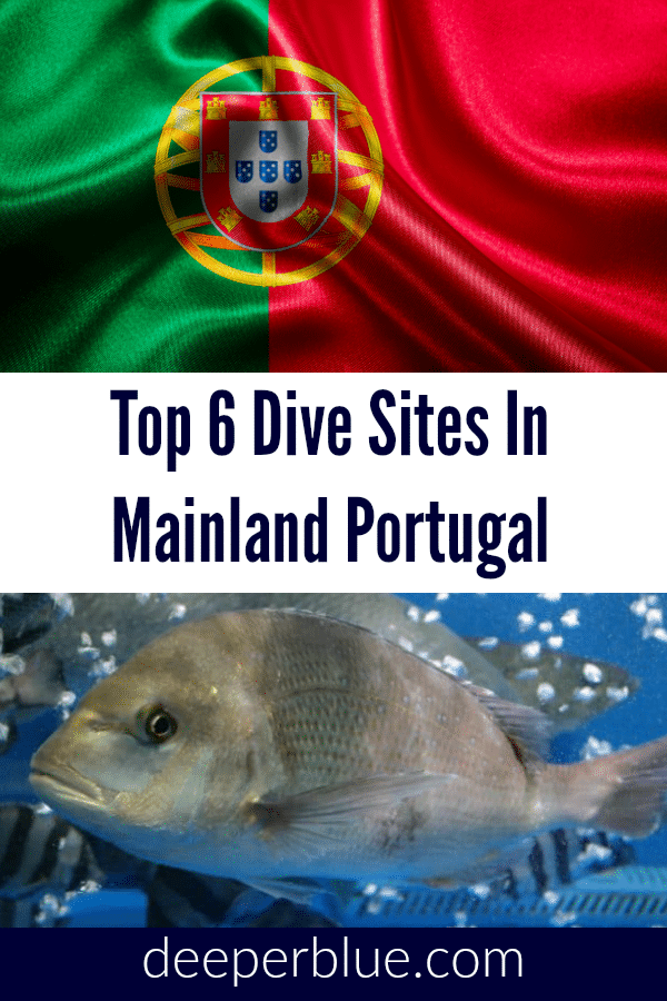 Top 6 Dive Sites In Mainland Portugal