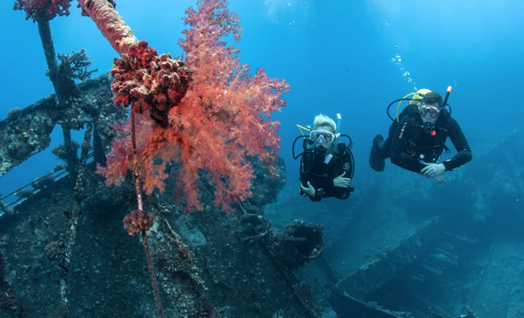 PADI, Mission Blue Join Up To Spur Support for Hope Spots