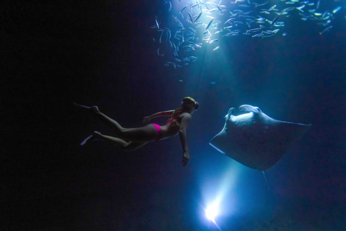 Alison freediving with manta rays