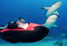 Go Shark Diving With The SEABOB