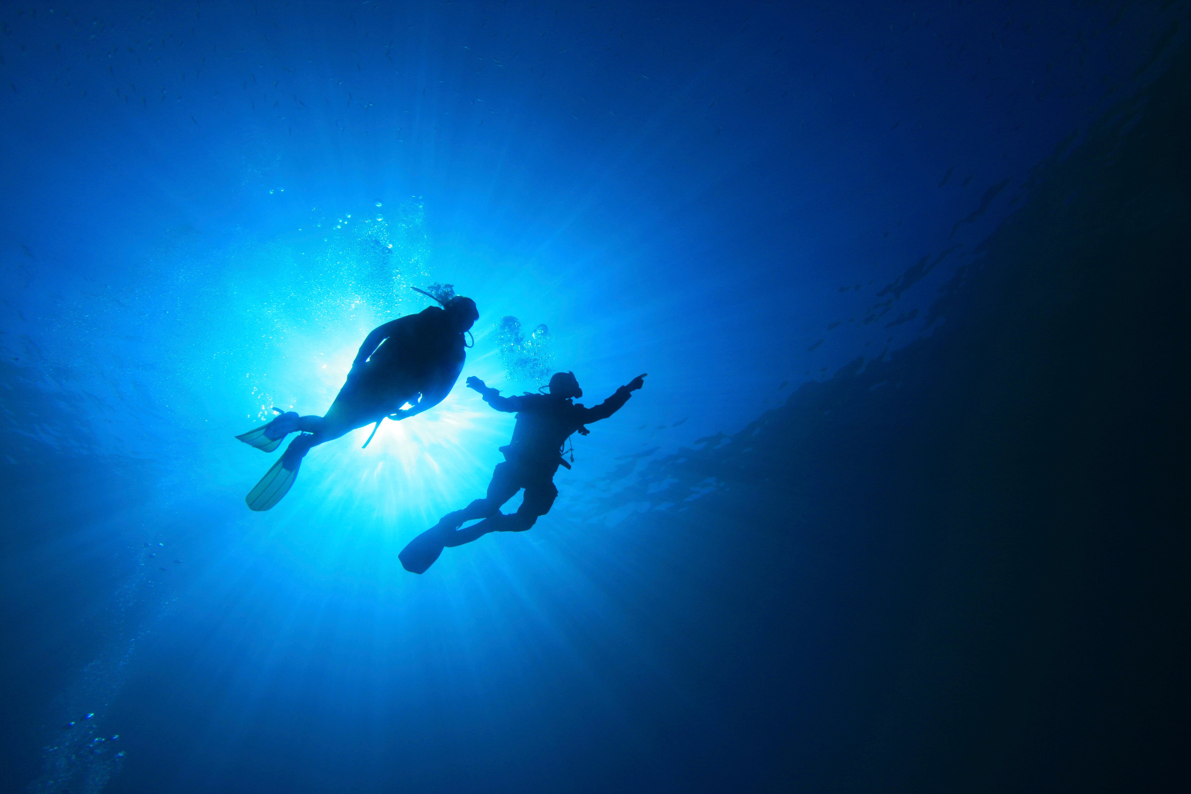 Two Scuba Divers In Silhouette
