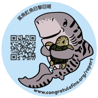 Raising Awareness About Shark Consumption In Taiwan 1