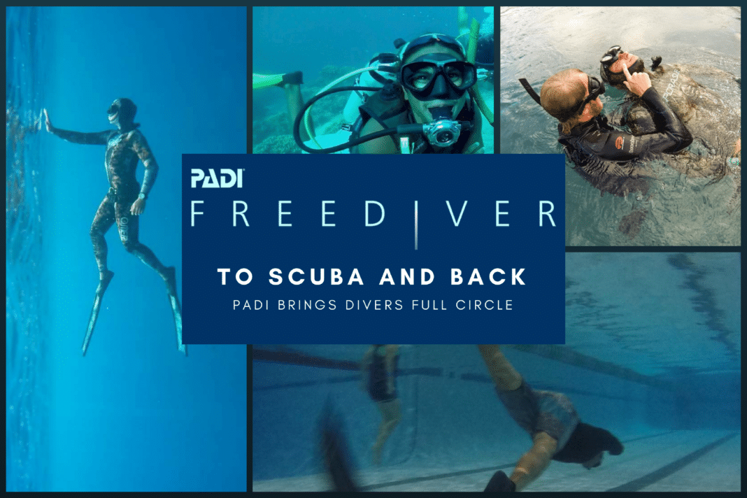 PADI- To Scuba and Back