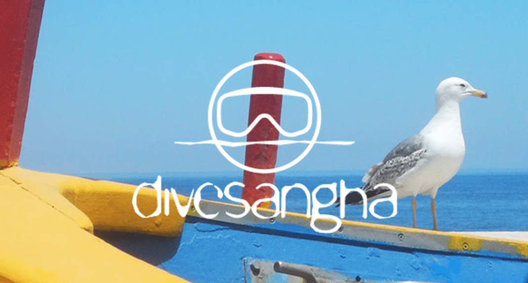Divesangha divewear retailer