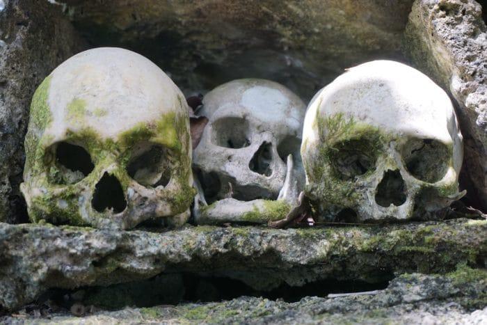 Chiefs of Skull Island