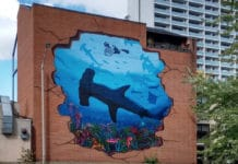 Rob Stewart Memorialized in Toronto Mural