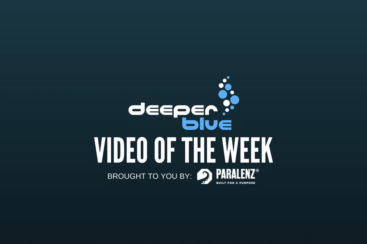 DeeperBlue.com - Video of the Week - Paralenz