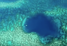 Giant Blue Hole found in Australia's barrier reef