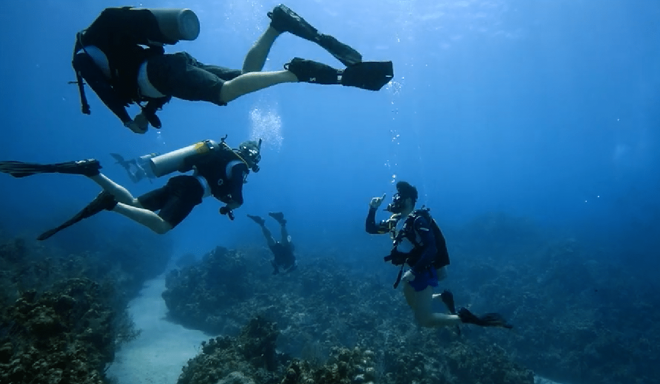 PADI partnering with organisations to help veterans through scuba diving