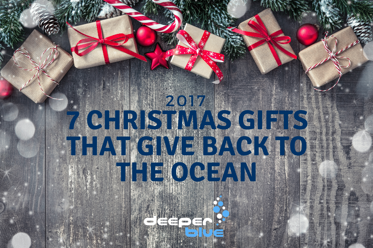 7 Christmas Gifts That Give Back to the Ocean – DeeperBlue.com