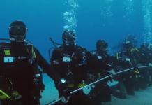 Australian divers attempt to break record