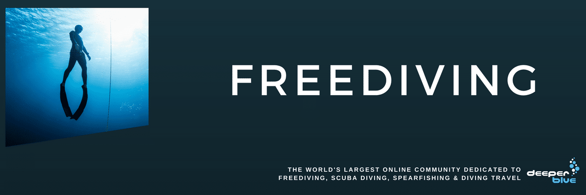 DeeperBlue.com Header Image - Freediving