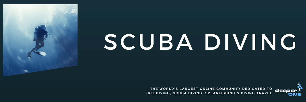 DeeperBlue.com Header Image - Scuba Diving