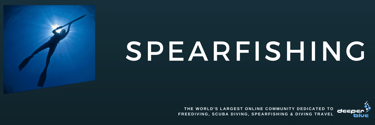 DeeperBlue.com Header Image - Spearfishing