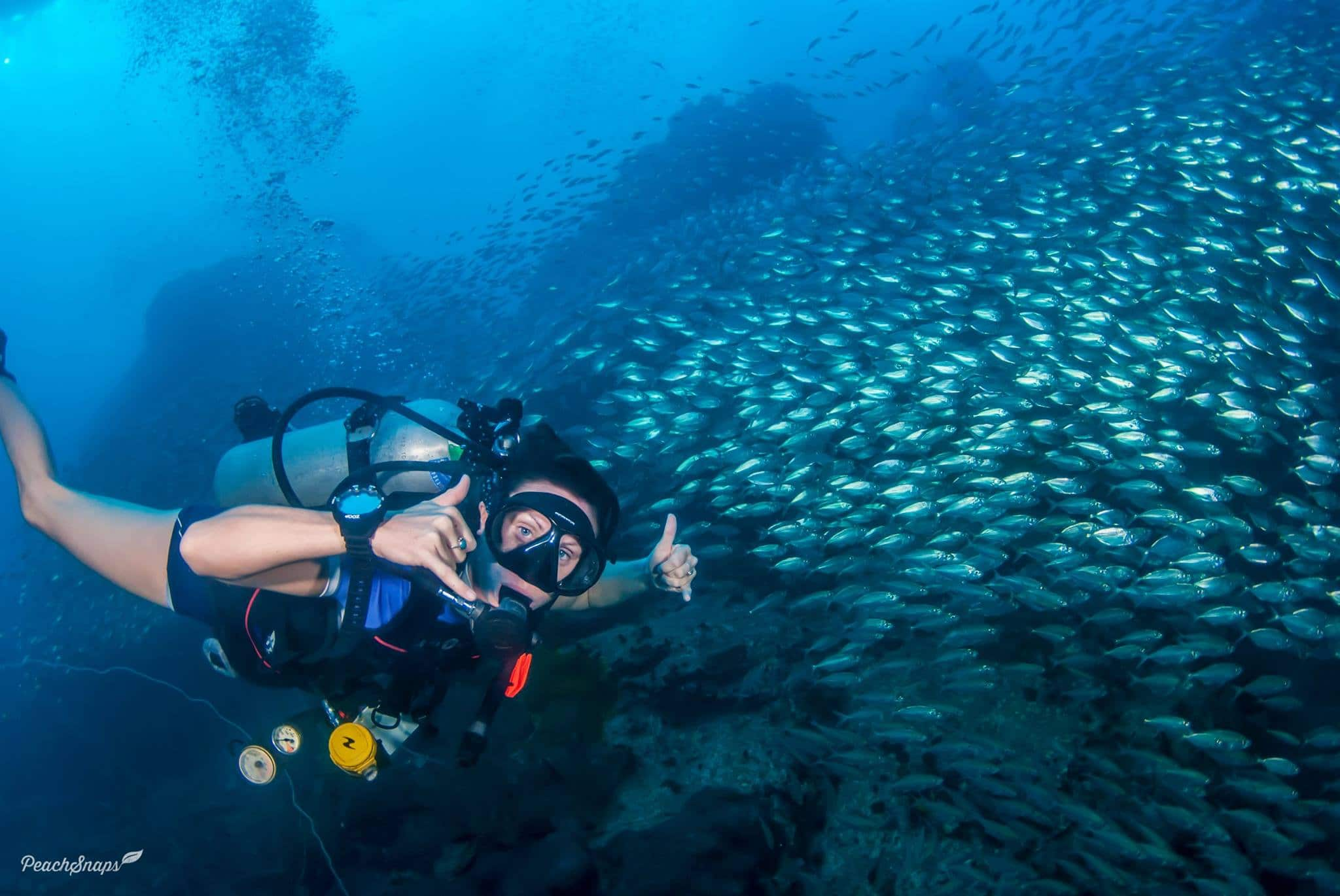 A successful diving instructor is very passionate