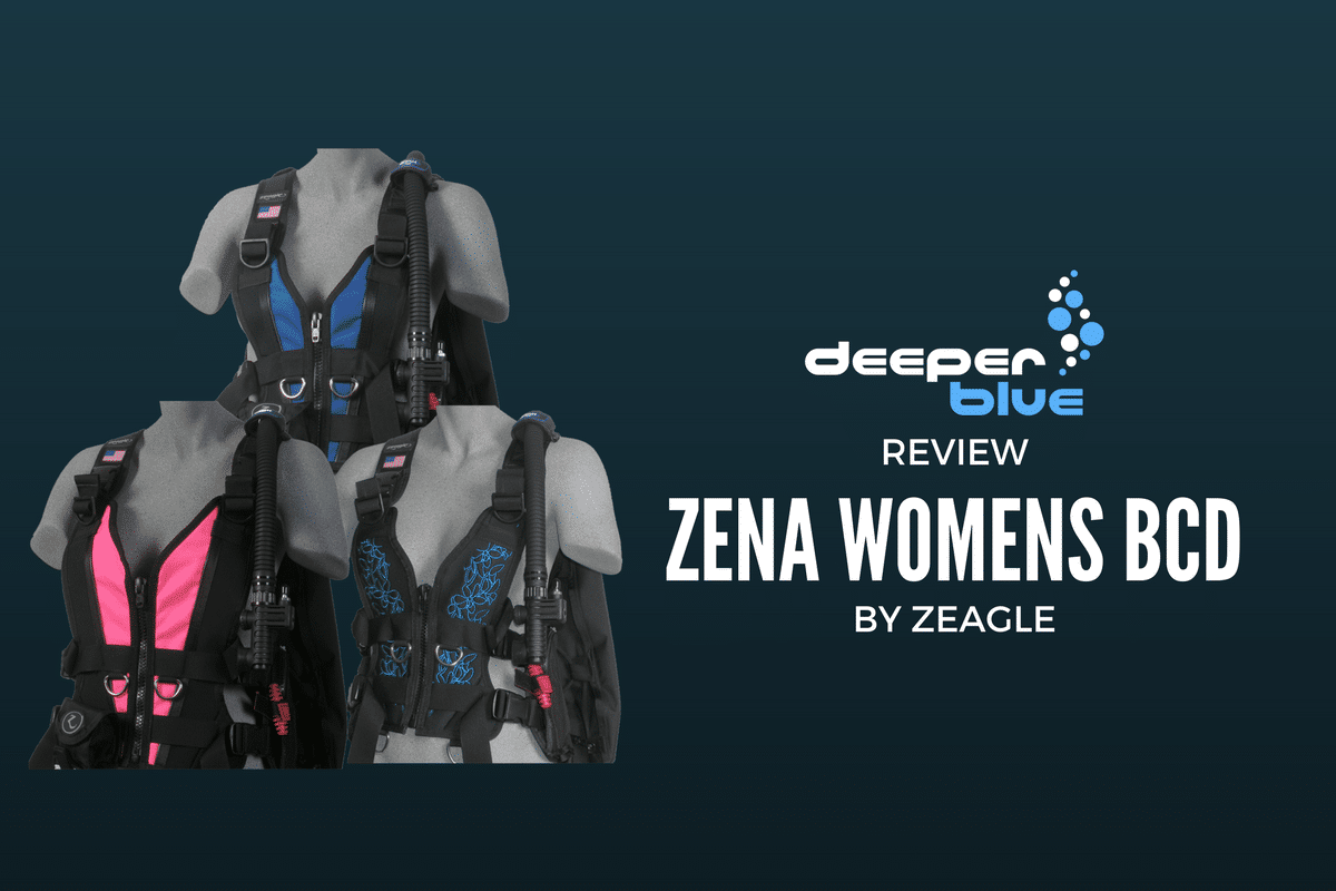 Review: Zena Womens BCD
