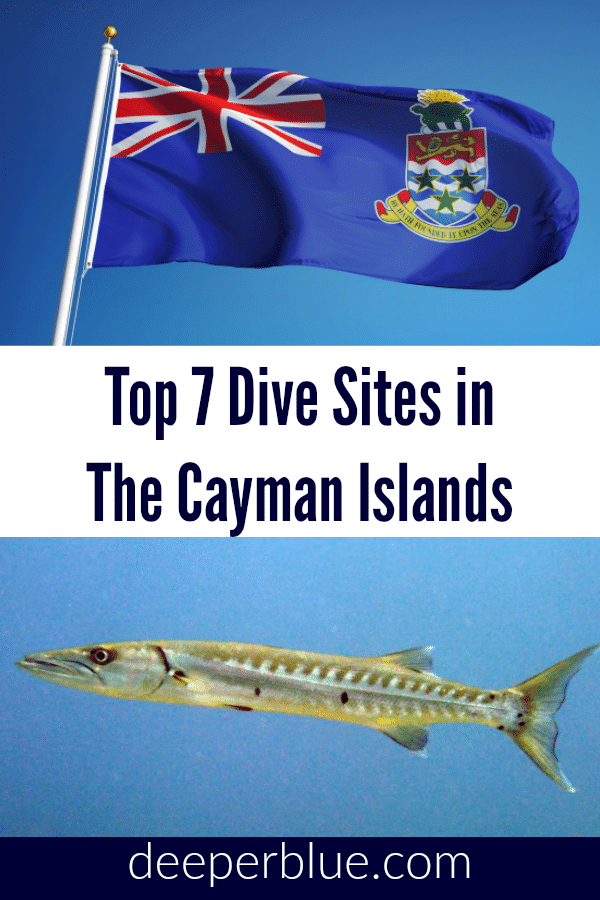 Top 7 Dive Sites In The Cayman Islands