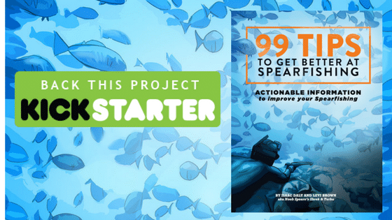 '99 Tips to Get Better at Spearfishing' Nears Crowdfunding Goal