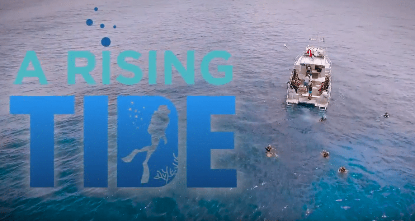 'A Rising Tide' Webseries Premieres Thursday