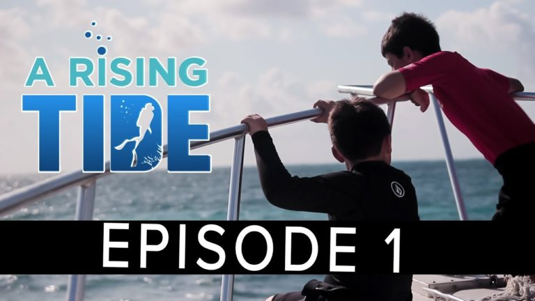 'A Rising Tide' Webseries – Episode 1 – Submissions