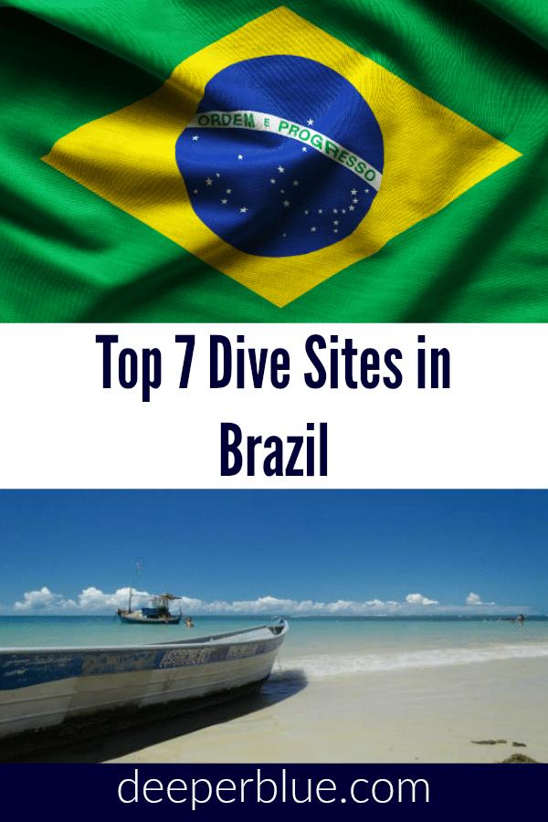 Top 7 Dive Sites In Brazil