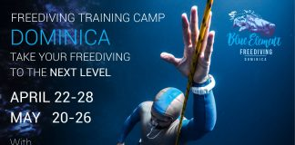 Jonathan Sunnex Hosting Two Freediving Training Camps In Dominica
