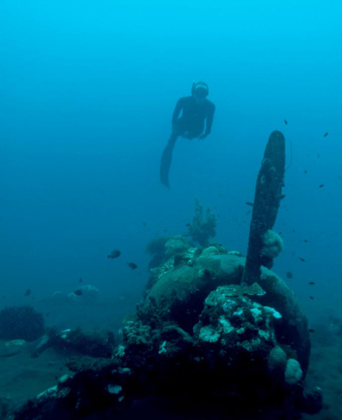 Freedive Papua New Guinea's Kimbe Bay