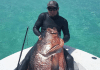 Luke Maillis Sets Record For The Largest Cubera Snapper Ever Speared