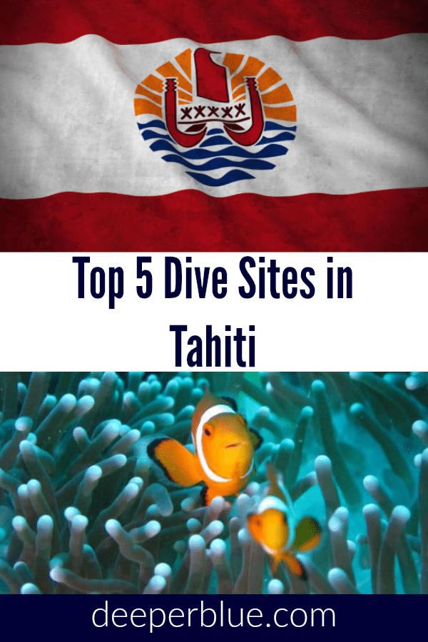 Top 5 Dive Sites in Tahiti