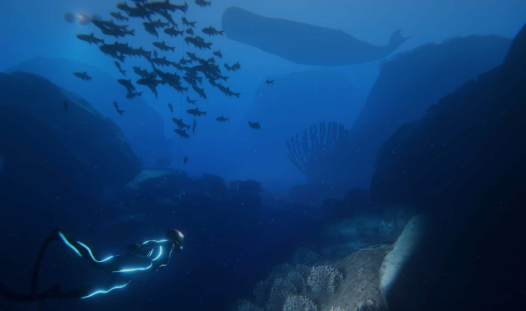 'Beyond Blue' Video Game Unveiled
