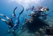 First Molchanovs Freediving Instructor Course Slated For August 2018