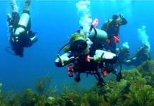 PADI Women's Dive Day 2018