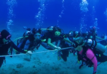 84 Women divers set world record in Cayman