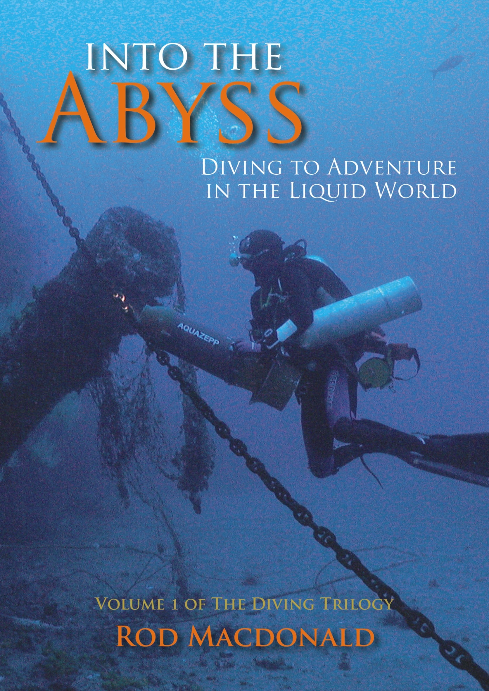 Rod MacDonald's 'Into The Abyss'