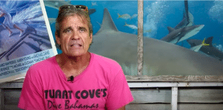 Stuart Cove Blasts The Media For Its Portrayal Of Sharks