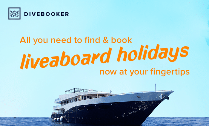 All you need to find & book liveaboard holidays now at your fingertips - Divebooker.com