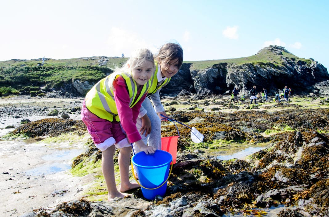 BSAC Offering Free Beachcomber Course For Kids