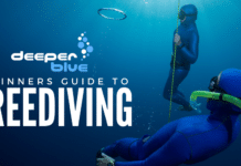 The DeeperBlue.com Beginners Guide to Freediving - Header