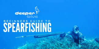 The DeeperBlue.com Beginners Guide to Spearfishing - Header