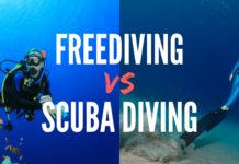 Freediving vs Scuba Diving