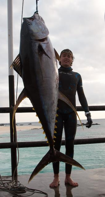 Daniel Hulme Yellowfin Tuna World Record