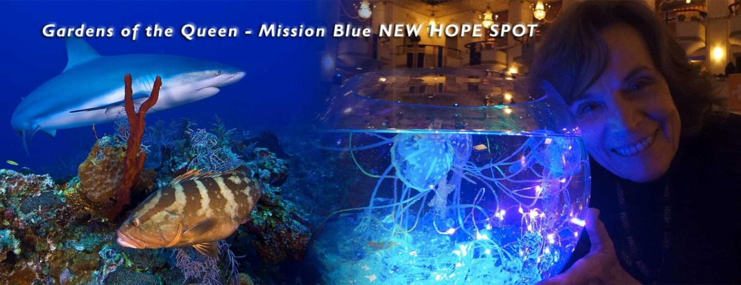 'Her Deepness' Dr Sylvia Earle Will Be At DEMA Show