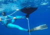 Crowdfunding Launched For New Octopus Pulling System