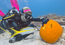 Underwater Pumpkin Carving Contest