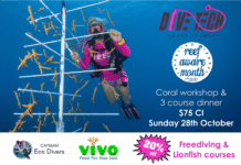 Divetech Reef Conservation Month 2018